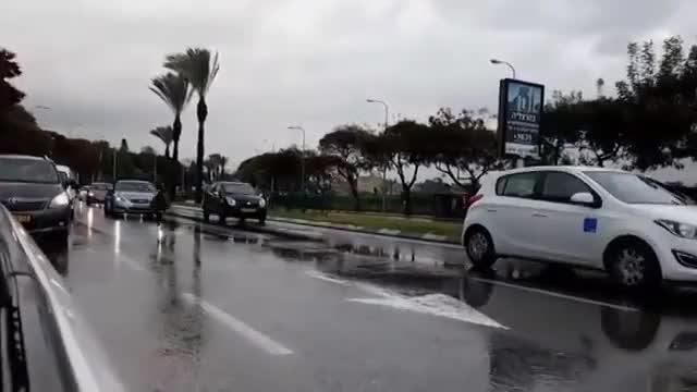 Watch and share Raw: Emu Runs Through Traffic In Israel (reddit) GIFs by guids80 on Gfycat