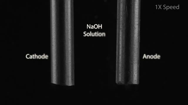 Watch Cathode and Anode Reactions in NaOH solution GIF by GIFs For Everything (@jiffiergifss) on Gfycat. Discover more Beautiful Chemistry, Chemical Reactions, Chemistry, Macro Photography, chemical education, chemicalreactiongifs, educationalgifs, high-school chemistry, watchandlearn GIFs on Gfycat