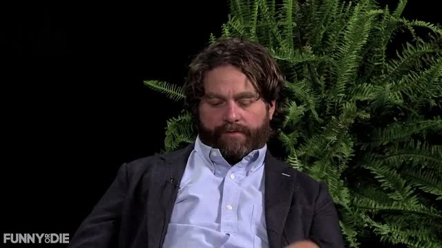 Between Two Ferns with Zach Galifianakis, FoD, between two ferns, between two ferns with zach galifianakis, fod, funny or die, funnyordie, justin bieber, zach galifianakis, how you refer to your fans GIFs