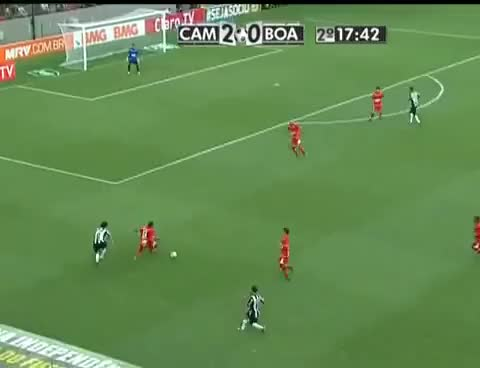 Watch and share Galo GIFs on Gfycat