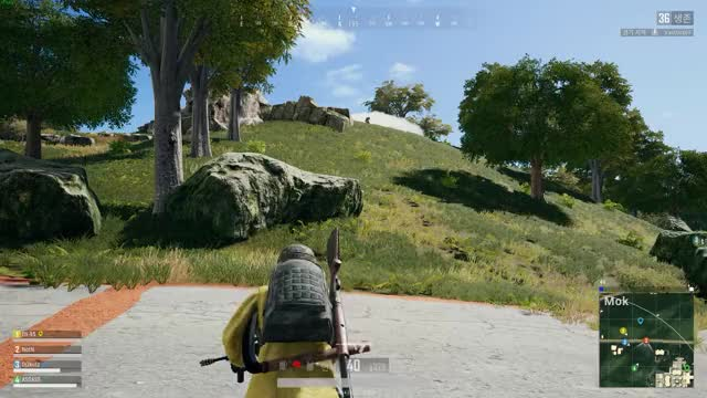 Watch and share Notn GIFs and Pubg GIFs by tochyion on Gfycat