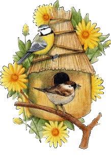 Watch and share Bird Nest animated stickers on Gfycat