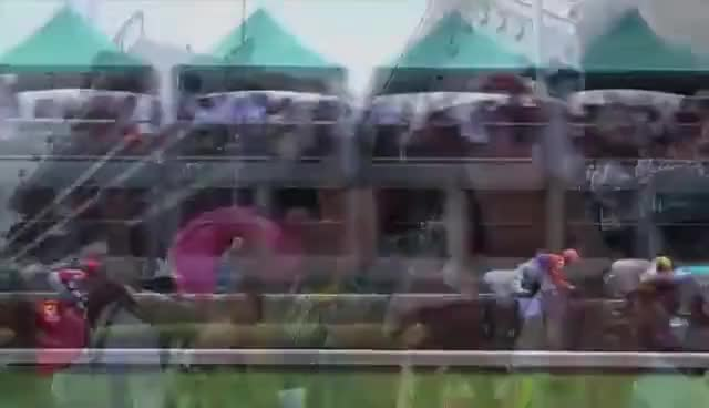 Watch and share Kentucky GIFs and Derby GIFs on Gfycat