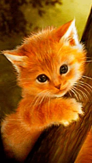 Watch and share Gambar-gambar-animasi-27229 GIFs on Gfycat