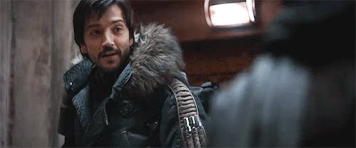 Watch and share Star Wars Rogue One GIFs and Diego Luna GIFs on Gfycat