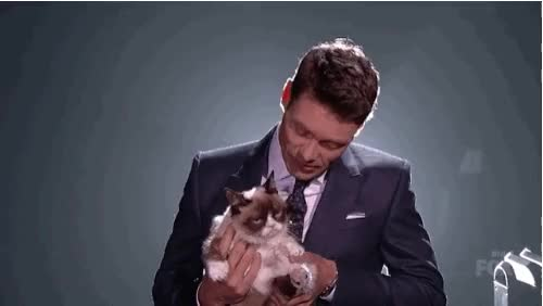 Watch this american idol GIF on Gfycat. Discover more american idol, grumpy cat, ryan seacrest GIFs on Gfycat