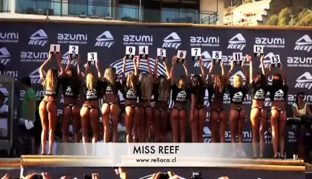 Watch MISS REEF 2011  CHILE  2011 GIF on Gfycat. Discover more 2011, 480p, ACA, Chile, Febrero, Miss, re, reef GIFs on Gfycat