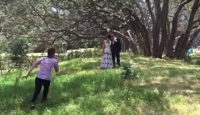 Watch and share Flamboyant Wedding Photographer Doing Interpretive Dance/martial Arts Fusion At Wedding. GIFs on Gfycat