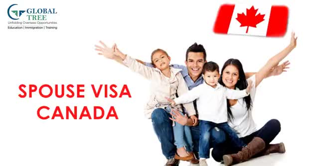 Watch and share Spouse Visa Canada GIFs by Study Abroad & Immigration on Gfycat