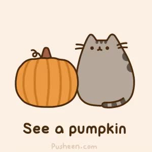 Watch and share =^● ⋏ ●^= See A Pumpkin... #pusheen #autumn #fall #gif GIFs on Gfycat