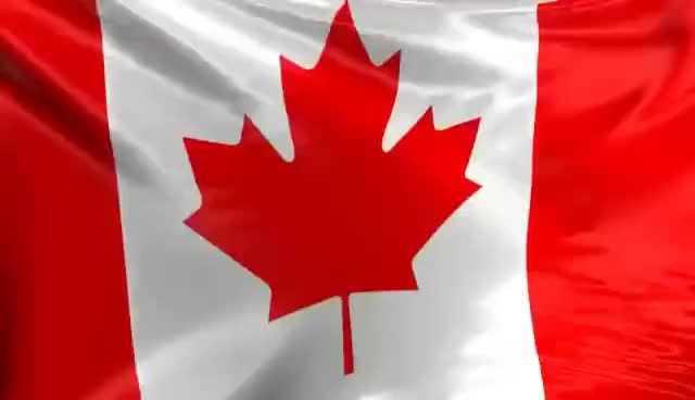 Watch Canadian Flag GIF on Gfycat. Discover more related GIFs on Gfycat