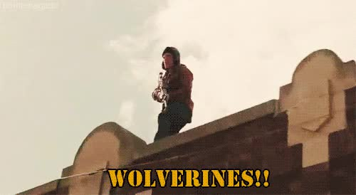 Watch wolverines GIF on Gfycat. Discover more related GIFs on Gfycat