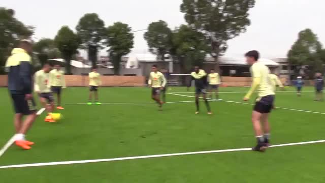 Watch skill GIF on Gfycat. Discover more soccer GIFs on Gfycat