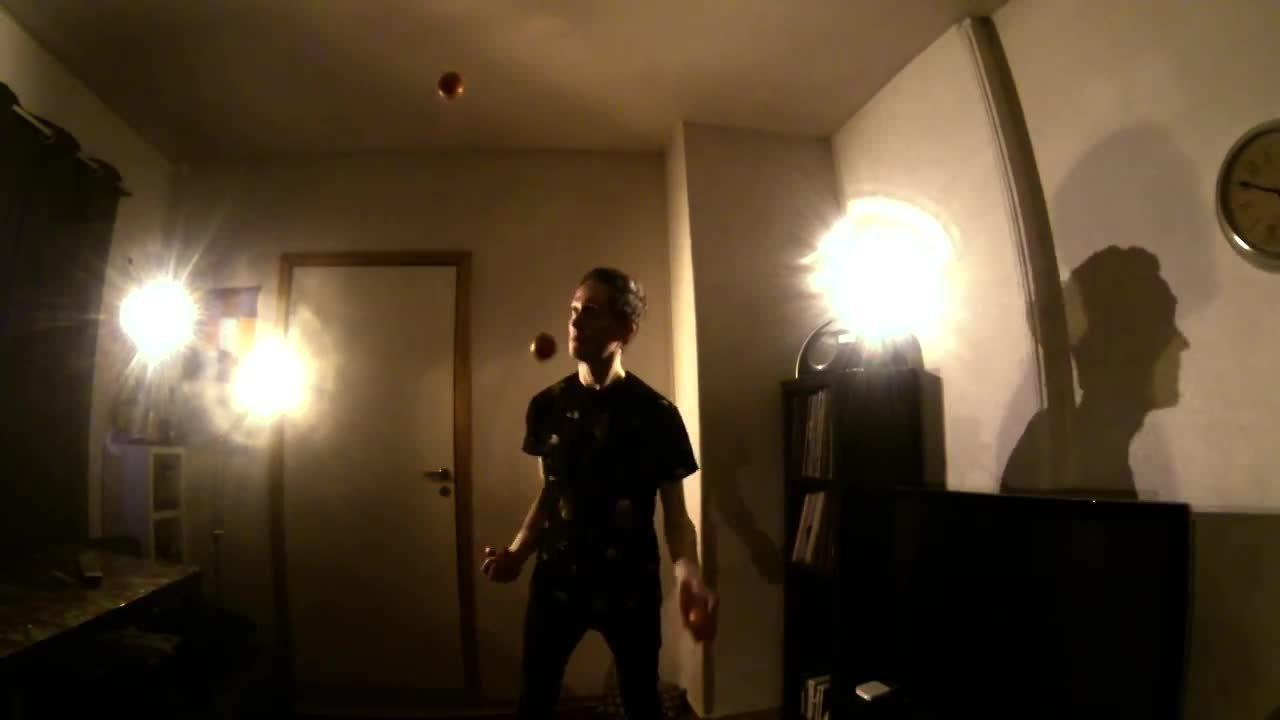 juggling, Animals GIFs
