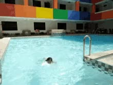 Watch and share Swimming Swimming Pool GIFs on Gfycat