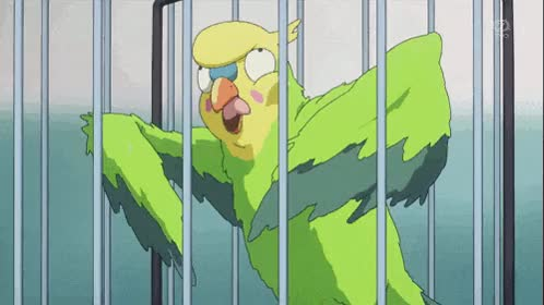 Watch parrot, dead, toradora GIF on Gfycat. Discover more related GIFs on Gfycat