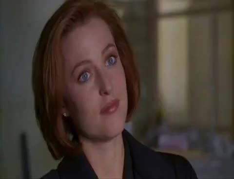 Watch Scully GIF on Gfycat. Discover more Scully, X-Files GIFs on Gfycat