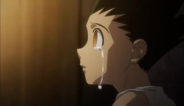 Watch Gon Limitless Transformation GIF on Gfycat. Discover more related GIFs on Gfycat