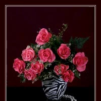 Watch Pink Roses GIF on Gfycat. Discover more related GIFs on Gfycat