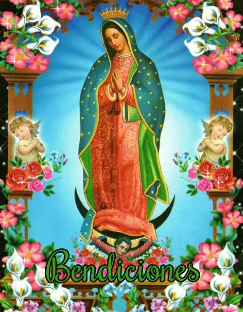 Watch and share Virgencita De Guadalupe Con Mensaje Especial GIFs on Gfycat