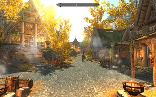 Watch skyrim GIF by Ishutaru (@ishutaru) on Gfycat. Discover more mods, skyrim GIFs on Gfycat