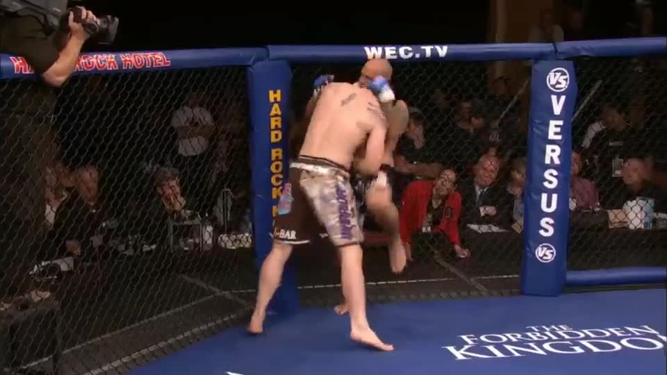 Fighting, KO, Knockout, MMA, Punches, UFC, WEC, Brian Stann WEC KO! GIFs
