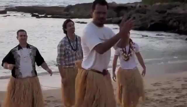 Watch and share Hawaii GIFs on Gfycat
