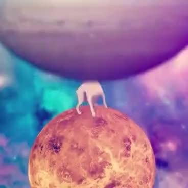 Watch and share Cachorro Dançando/ Musica=Shooting Stars GIFs on Gfycat