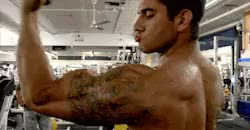 Watch and share Vascularity GIFs and Bodybuilder GIFs on Gfycat