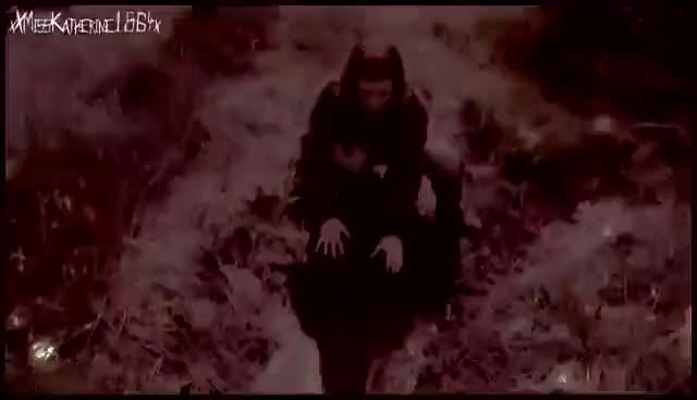 Watch ...Jana... GIF on Gfycat. Discover more Wolfs GIFs on Gfycat