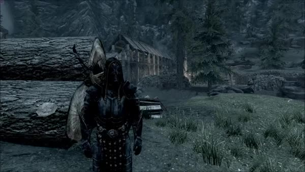 Watch this skyrim GIF on Gfycat. Discover more skyrim, well done GIFs on Gfycat