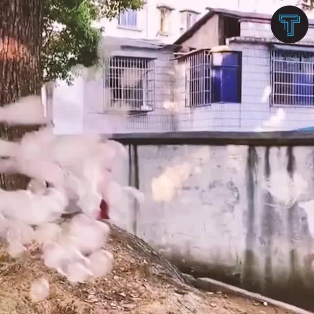 Watch and share Dec Magic Smoke Bubbles Machine GIFs by Nikkie Cinco Munda on Gfycat