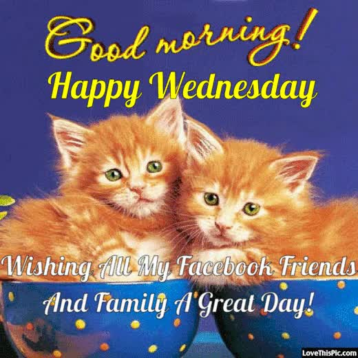 Good Morning Happy Wednesday Facebook Friends And Family GIF