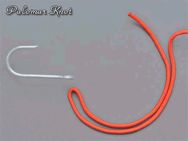 Watch and share Knot GIFs on Gfycat