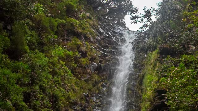 Watch and share Waterfall GIFs and Madeira GIFs by tombrcz on Gfycat