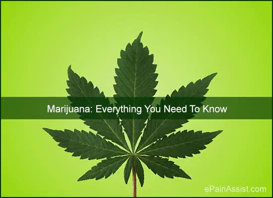 Watch and share Medical Marijuana GIFs and Pot GIFs by ePainAssist.com on Gfycat