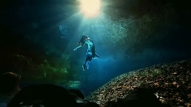 Watch Summoned by the sun [Cinemagraph ocean underwater swimmer diver beauty nature sunlight sunshine ray light] (reddit) GIF on Gfycat. Discover more gfycatdepot GIFs on Gfycat