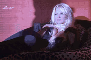 pamela anderson pam anderson gif GIFs