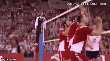 Watch Incredible!  GIF on Gfycat. Discover more fivb, fivb volleyball, fivb world league, fivbmenswch, mens volleyball, mikasa, polska siatkówka, siatkówka, voleybol, volleyball, volleyball court, volleyball gif, volleyball gifs, volleyball is love, volleyball save, volleyball spike GIFs on Gfycat