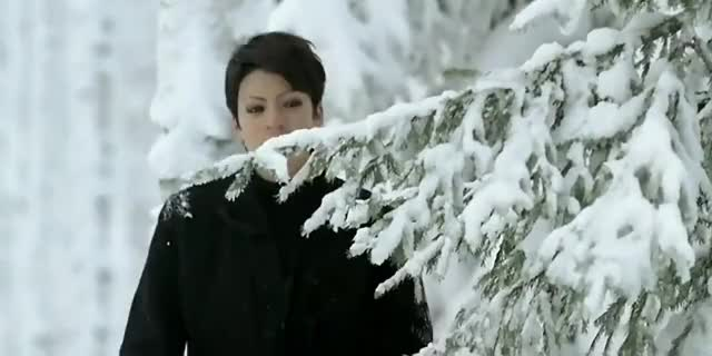 Watch this snow GIF on Gfycat. Discover more nature, nightwish, snow, snowing GIFs on Gfycat