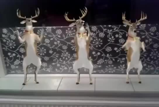 Watch Rudolf dancing Jingle Bells GIF on Gfycat. Discover more related GIFs on Gfycat