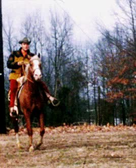 Watch and share Elvis Presley At Circle G Ranch – Amazing 30 Photos GIFs on Gfycat