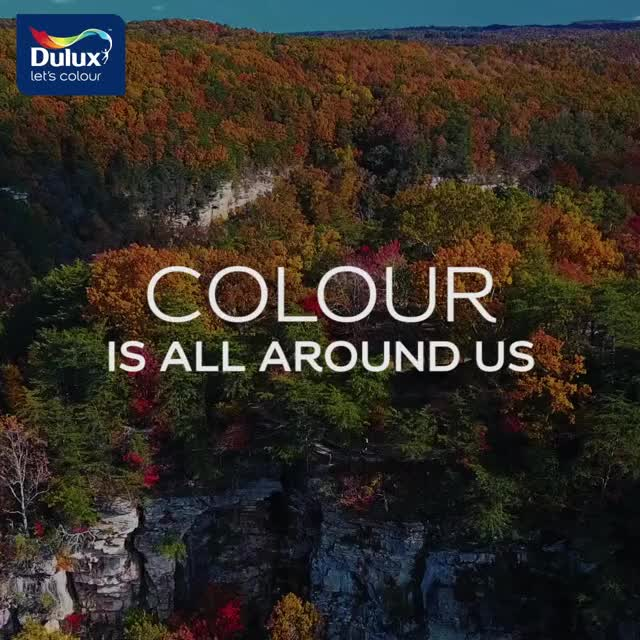 Watch and share Dulux March 21st 2 GIFs on Gfycat