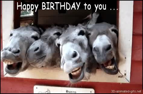 Watch and share Happy Birthday Old Man GIFs on Gfycat