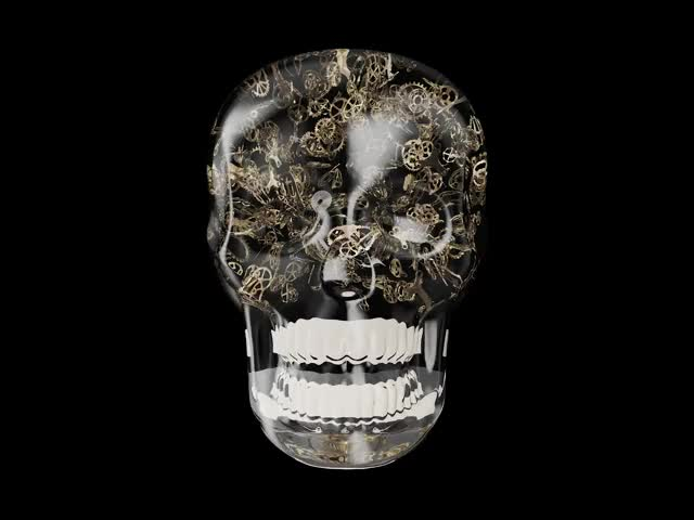 Watch and share Skull[####] Png:0:179-Apple ProRes 422 GIFs by berdvaye on Gfycat