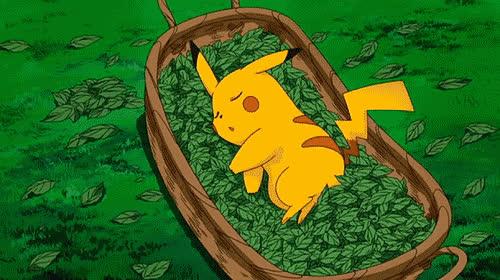asleep, cute, garden, good, good night, leaf, night, outdoors, pikachu, pokemon, Pokemon - Good night GIFs