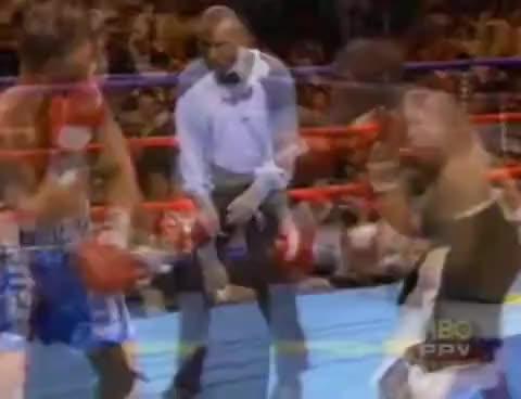 Watch Mayweather v Gatti GIF on Gfycat. Discover more fight, gatti, mayweather, ownage GIFs on Gfycat