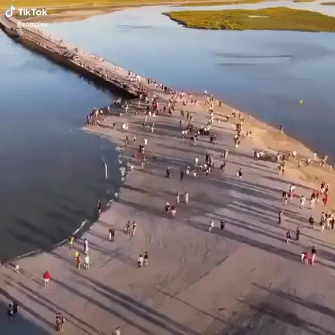 Watch and share Mindwanders GIFs and Nature GIFs by bravebroccoli on Gfycat