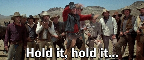 firearms, weekendgunnit, what the hell blazing saddles GIFs