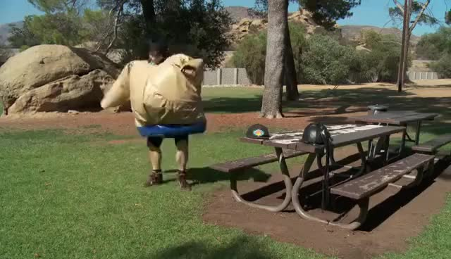Watch sumo suits GIF on Gfycat. Discover more suits, sumo GIFs on Gfycat